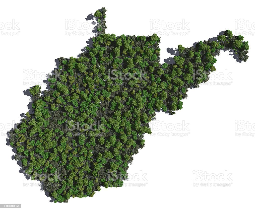 West Virginia in Trees stock photo