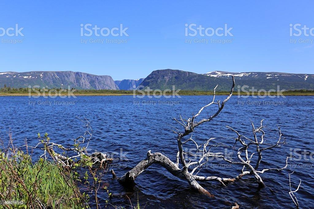western brook pond stock photo