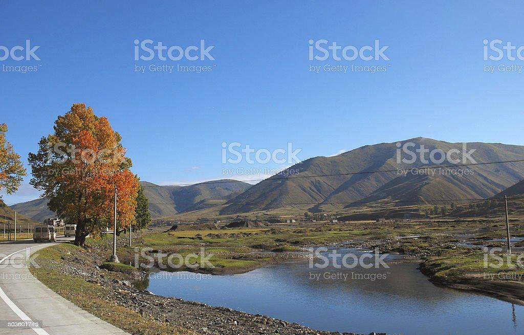 Western China, Highlands Ranch royalty-free stock photo