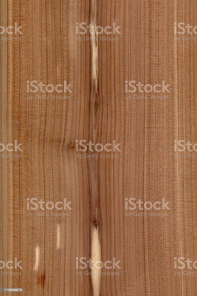 Western red cedar wood, Thuja plicata stock photo