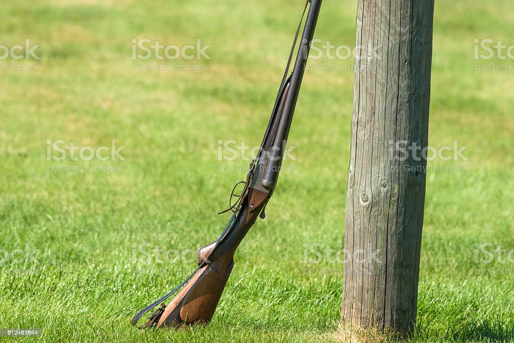 Western rifle on a green field stock photo
