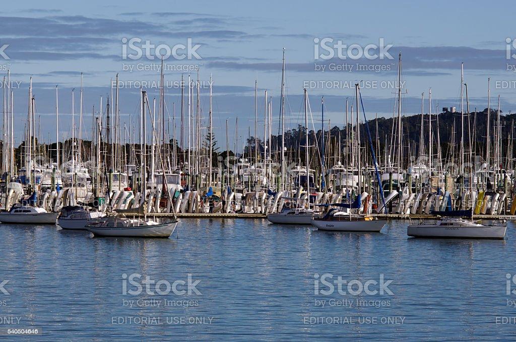 Westhaven Marina - Auckland stock photo