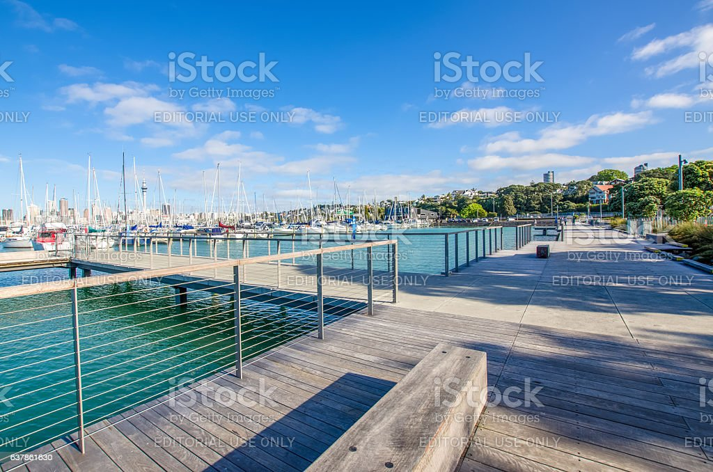 Westhaven Marina in Auckland,New Zealand. stock photo