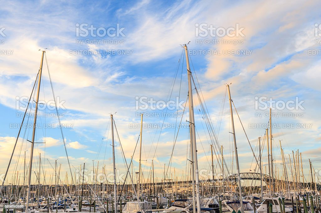 Auckland, New Zealand- December 9, 2013. Westhaven Marina is the stock photo