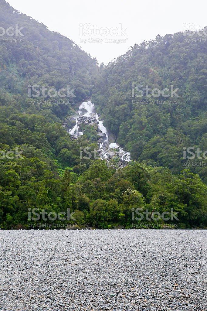 Westland National Park. New Zealand stock photo