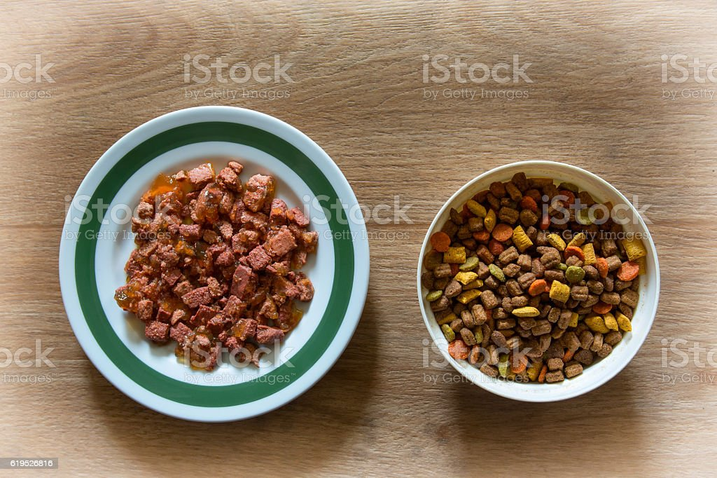 Wet and dry cat food stock photo