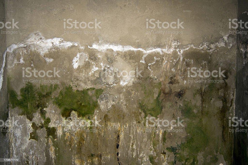 Wet basement royalty-free stock photo