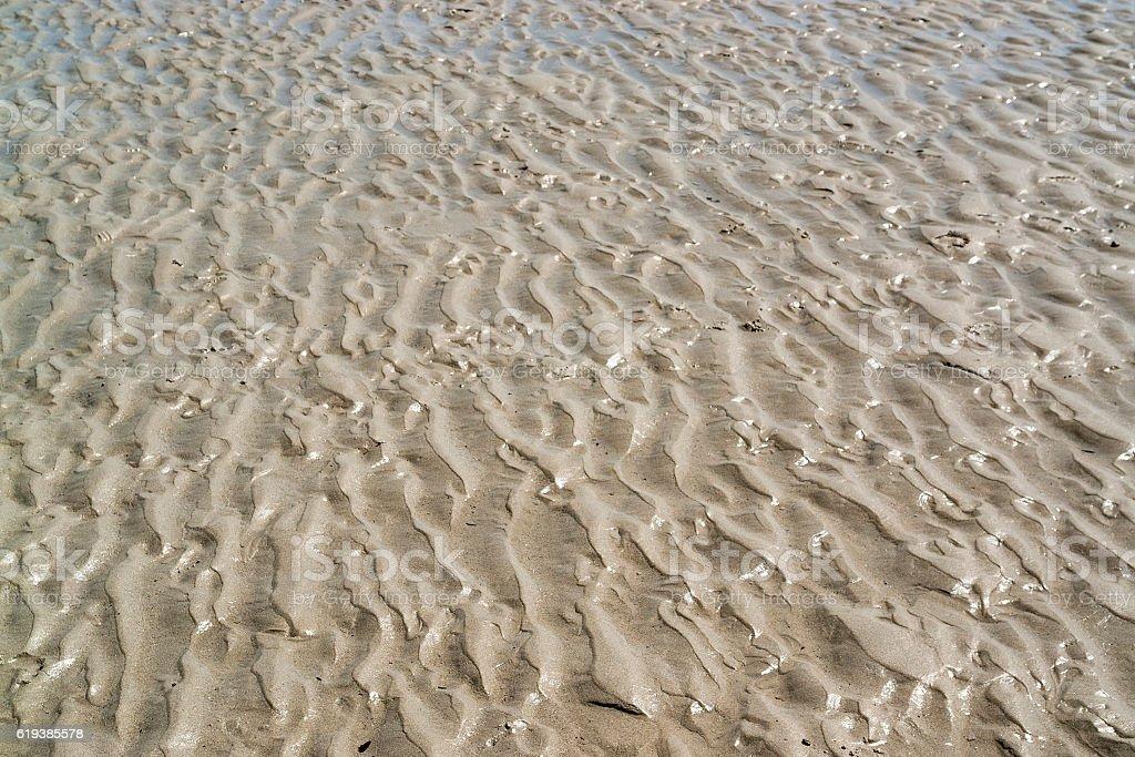 wet beach scenery stock photo