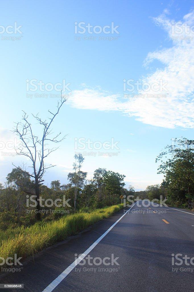 Влажные черные дорога с солнечных лучей и голубое небо после 30 дождь Стоковые фото Стоковая фотография