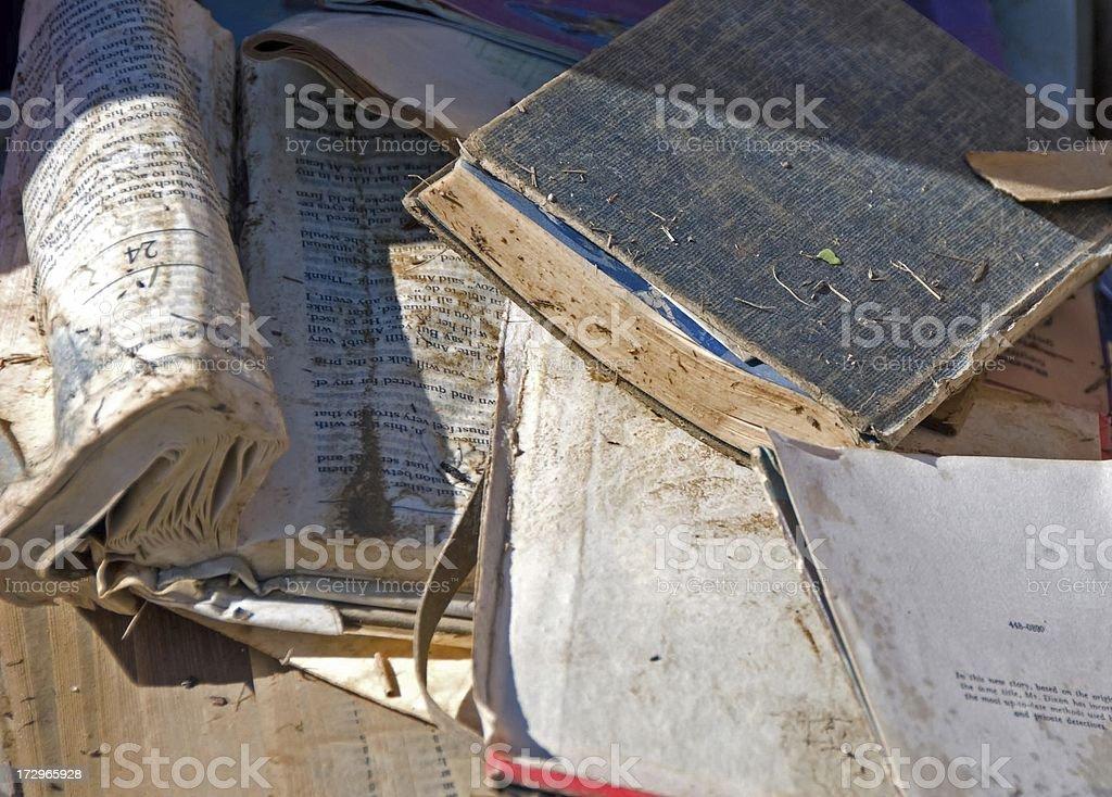 Wet Books royalty-free stock photo