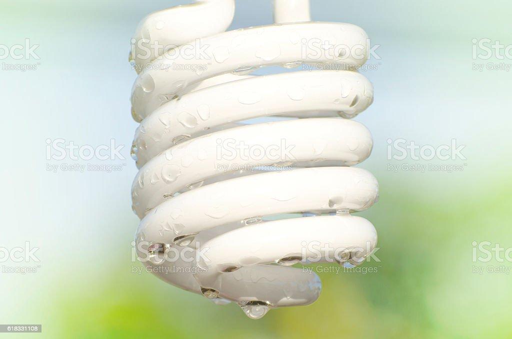 Wet bulb stock photo