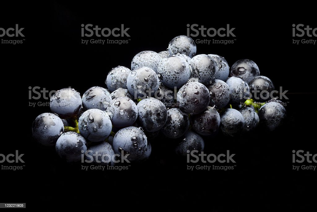 Wet Bunch of Black Grapes laying royalty-free stock photo