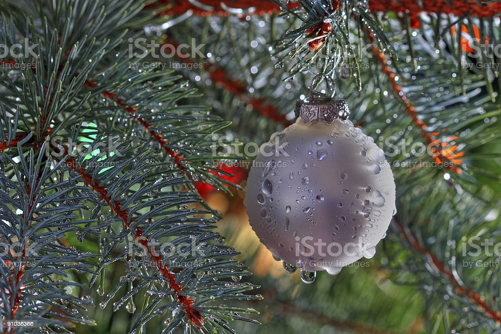 Wet Christmas royalty-free stock photo