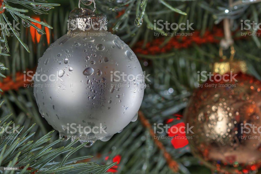 Wet Christmas royalty-free stock photo