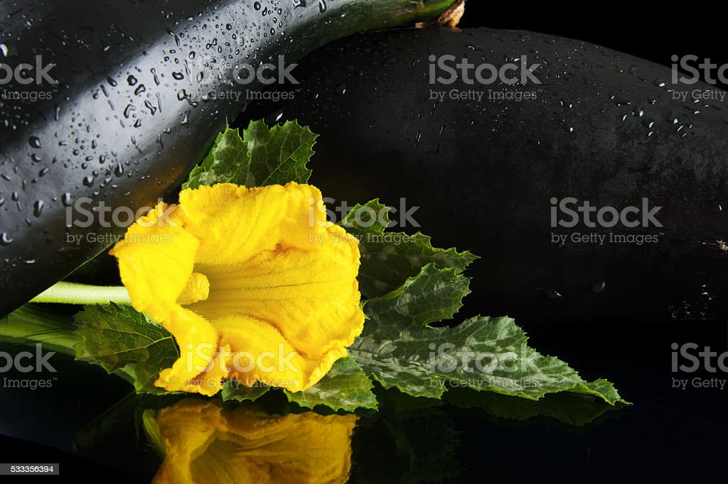 Wet courgettes with flowers on black background stock photo