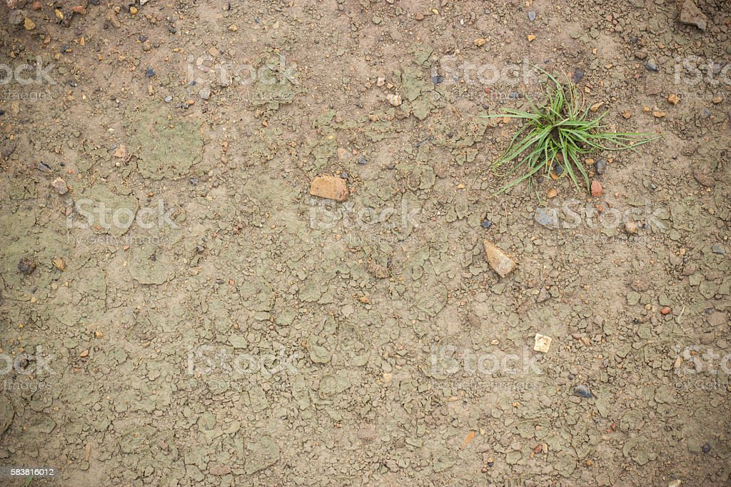 Wet Dirt Land stock photo