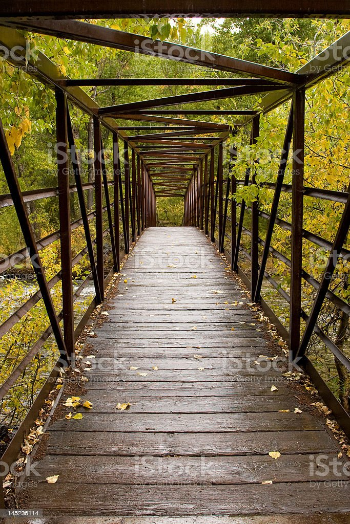 Wet Foot Bridge royalty-free stock photo