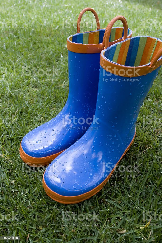 Wet Galoshes in the Grass stock photo