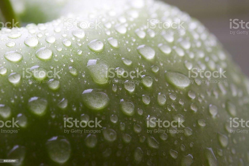 Wet green apple macro royalty-free stock photo