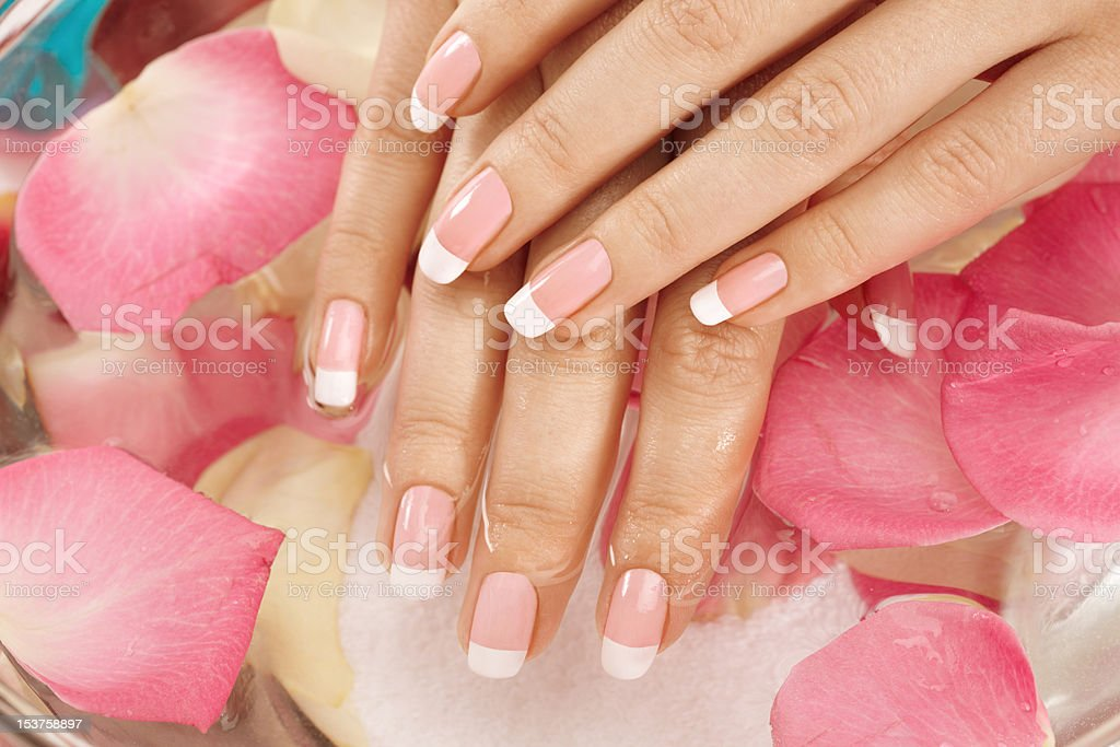 Wet hand and petals royalty-free stock photo