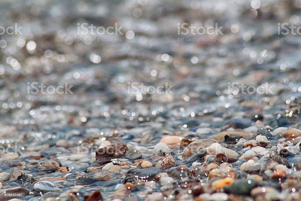 Wet pebble stone on the beach stock photo