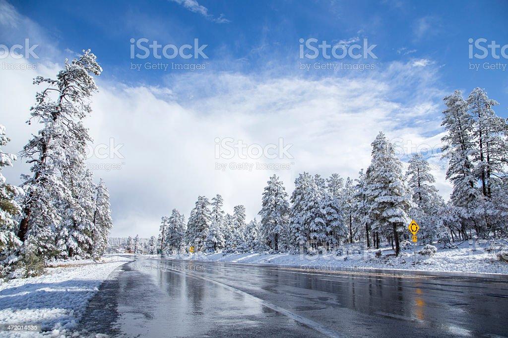 wet road royalty-free stock photo