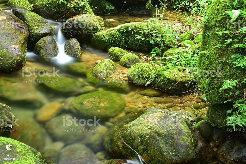 Wet rocks and moss with murmuring water stream stock photo