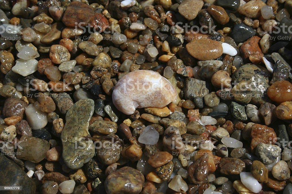 Wet Rocks détail photo libre de droits