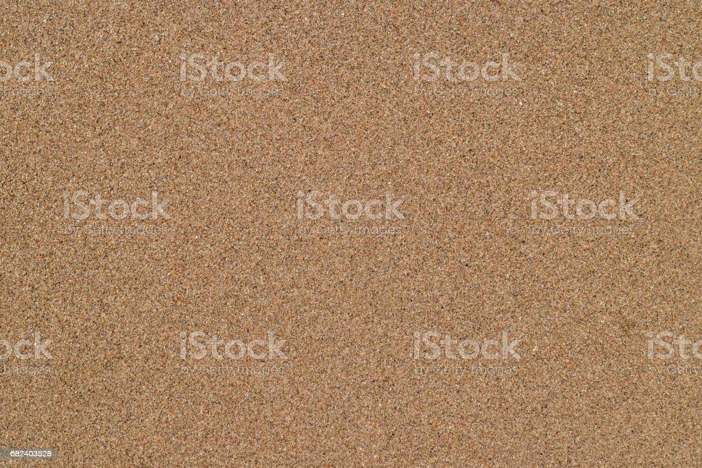 Wet sand on the sea coast stock photo