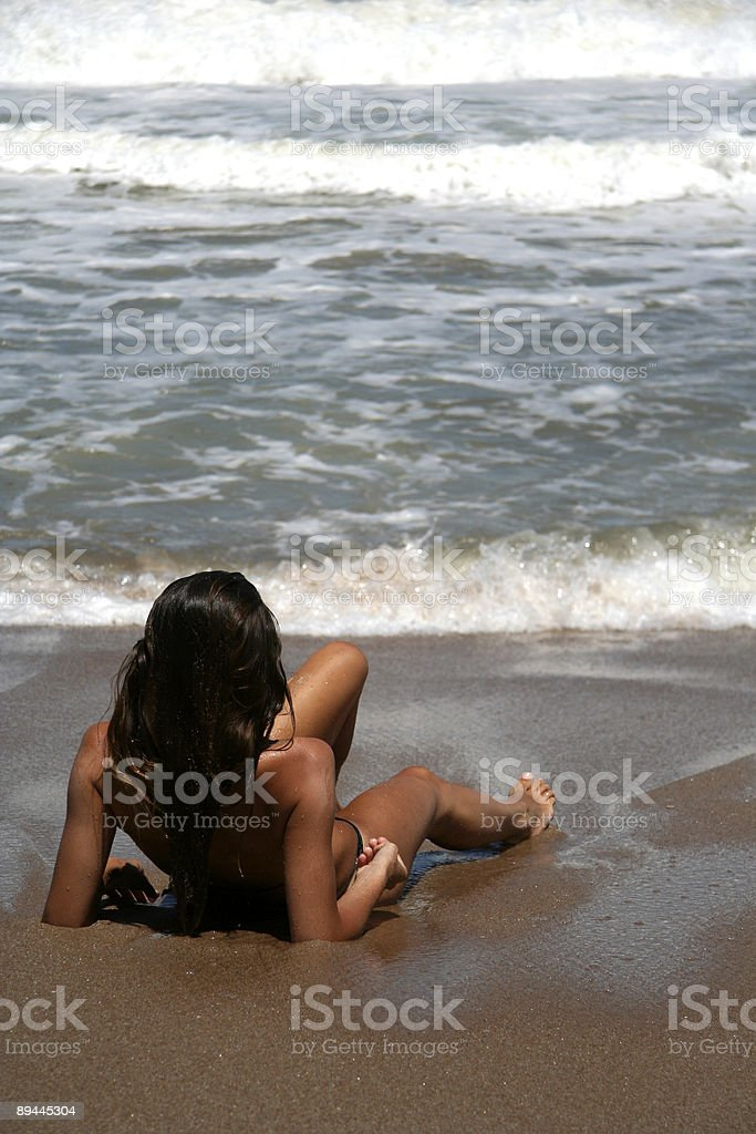 Wet Summer royalty-free stock photo