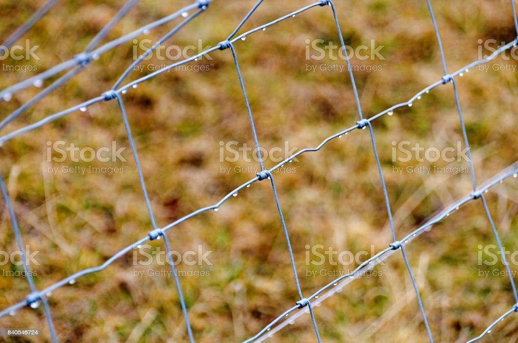 Wet wire frame fence stock photo