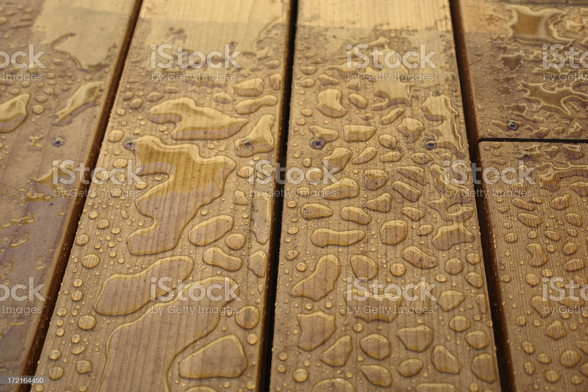 Wet Wood royalty-free stock photo