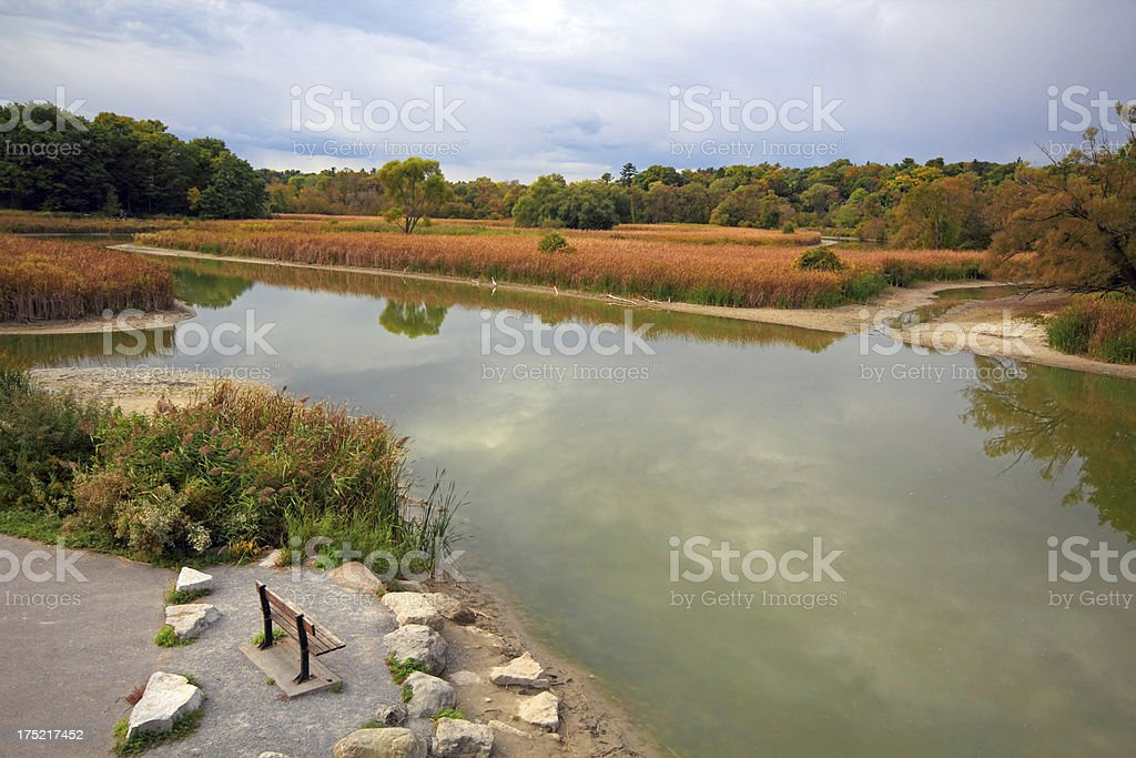 Wetland Landscape royalty-free stock photo