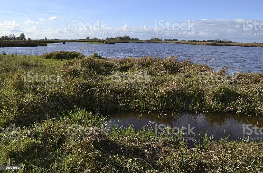 Wetland nature reserve the Green Jonker, Netherlands. royalty-free stock photo
