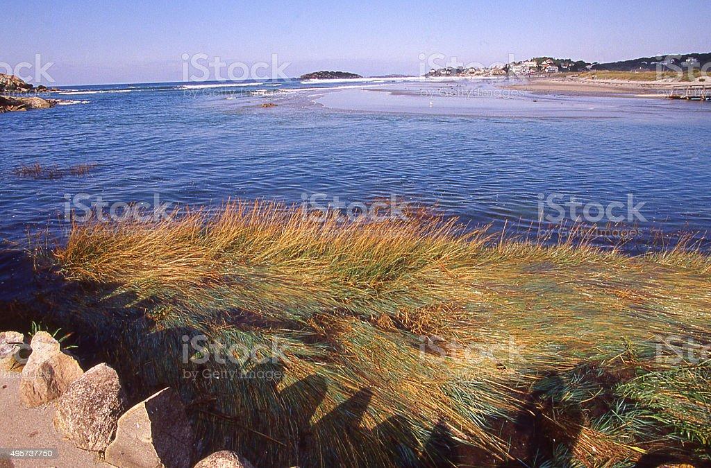 Wetlands and beaches near Good Harbor Beach Gloucester Massachusetts stock photo