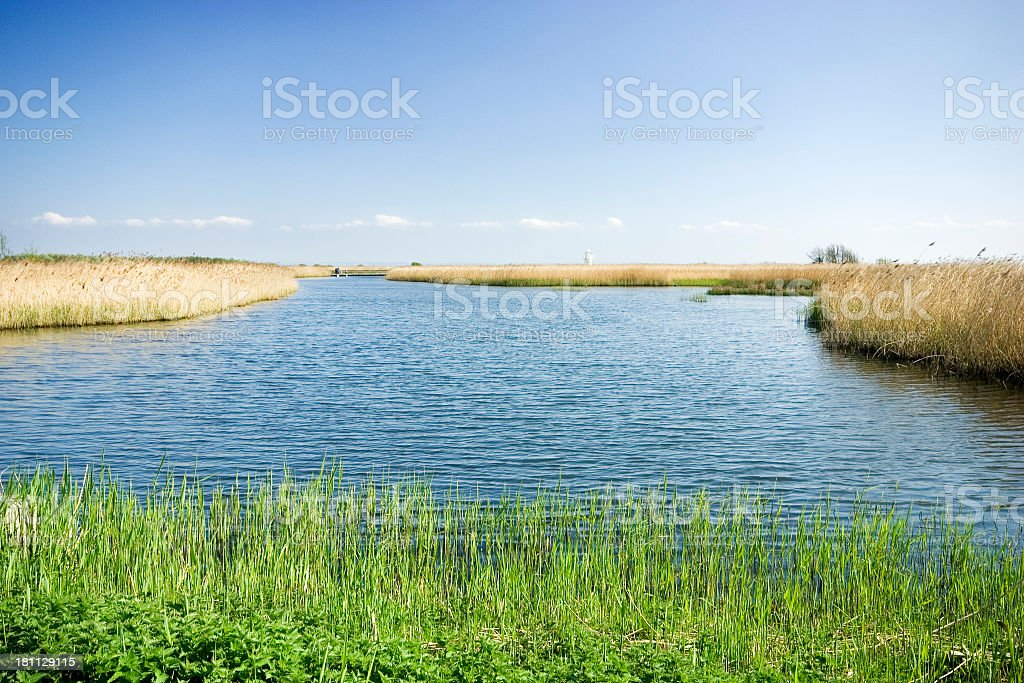 wetlands and distant lighthouse royalty-free stock photo