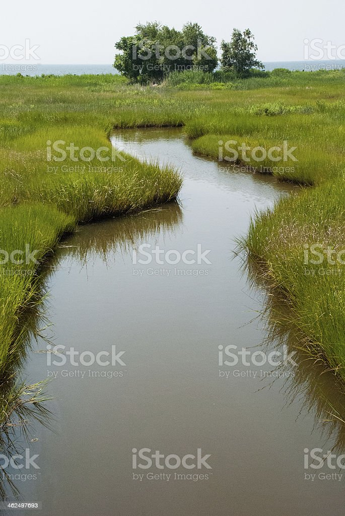 Wetlands and Stream at Silver Sands State Park Milford Connecticut stock photo