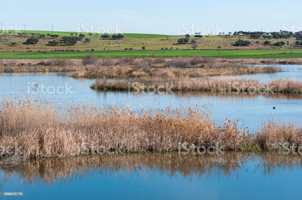 Wetlands associated with de River Guadiana stock photo