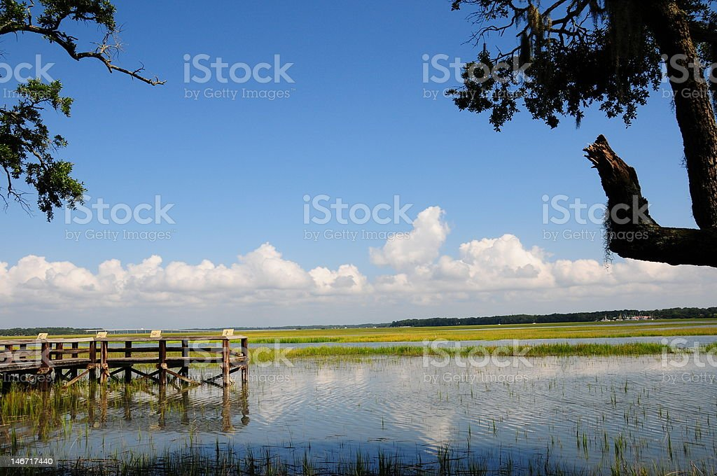 Wetlands Preserve royalty-free stock photo