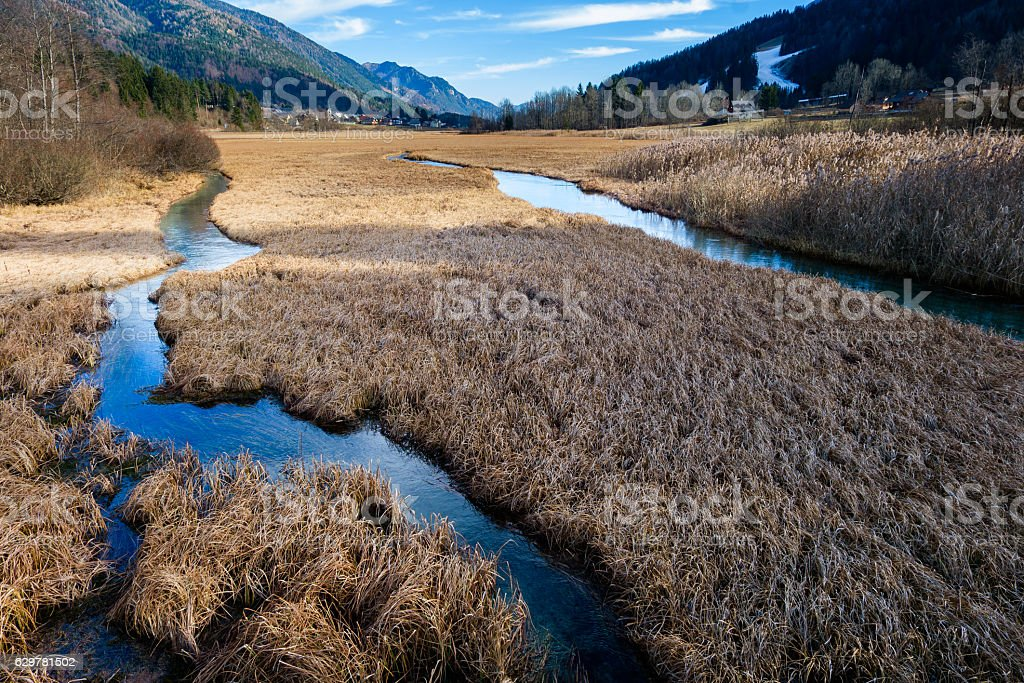Wetlands with water channels and grass stock photo