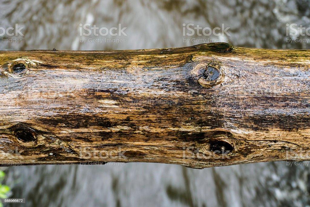 Wetness stock photo