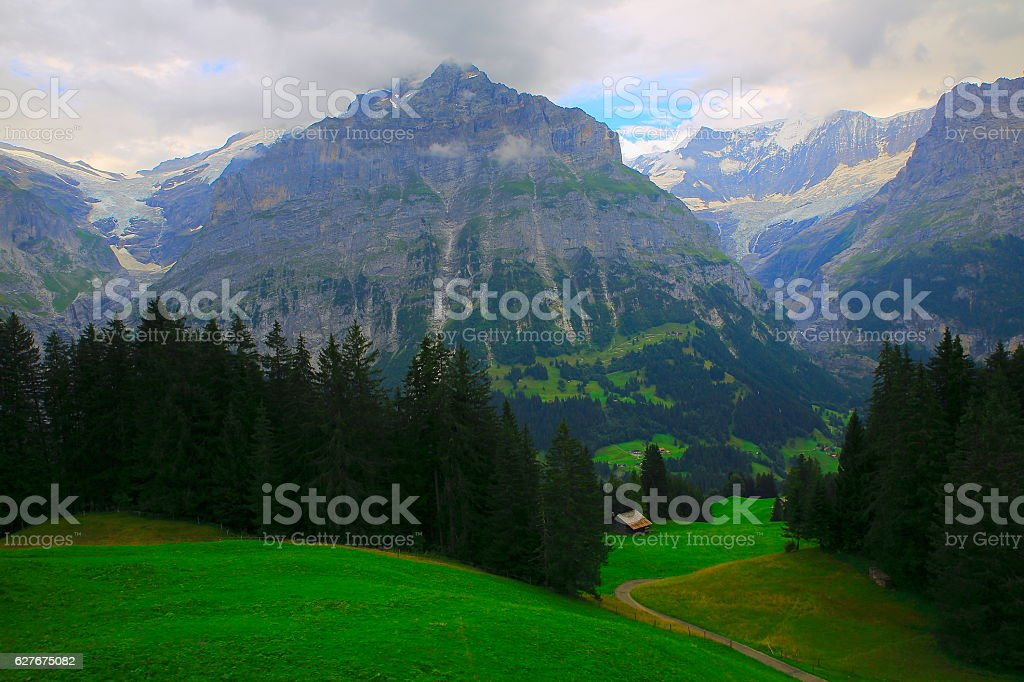 Wetterhorn, Idyllic swiss chalets above Grindelwald valley landscape: Swiss Alps stock photo
