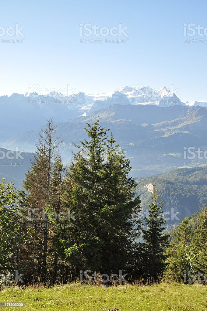 Wetterhörner, mountains in Switzerland royalty-free stock photo