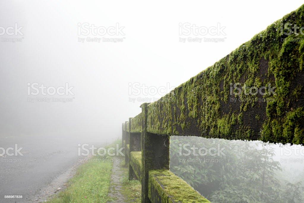 wettest place of India, Khasi hills ; Cherrapunji stock photo