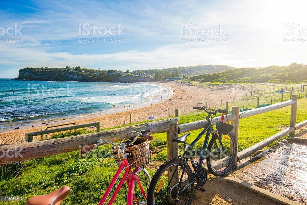 Whale beach stock photo