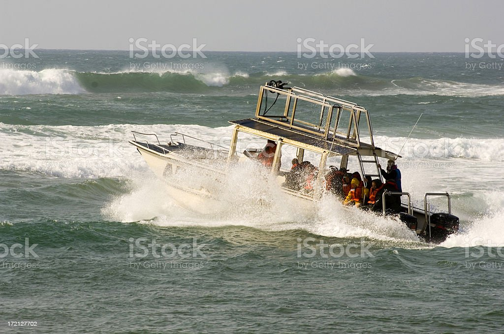 Whale boat royalty-free stock photo