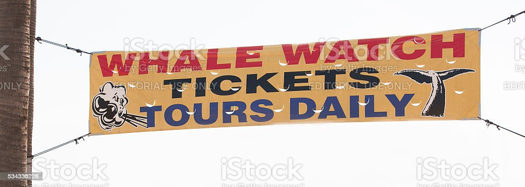Whale watching tickets tours daily vinyl yellow banner sign stock photo