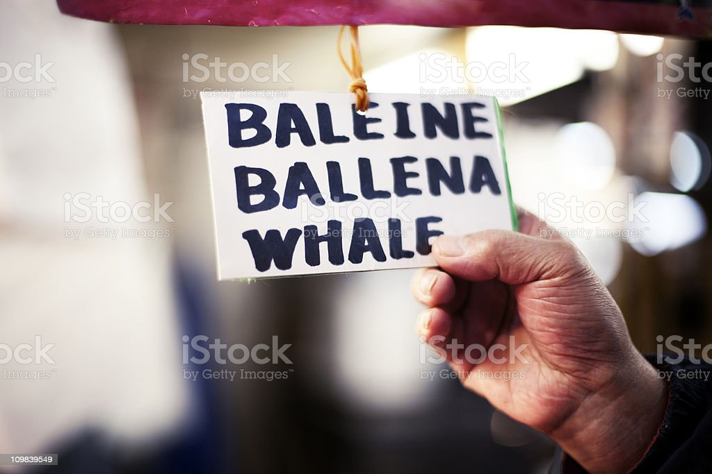 Whaling industry stock photo