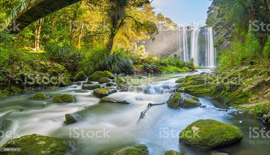 Whangarei  falls New Zealand stock photo