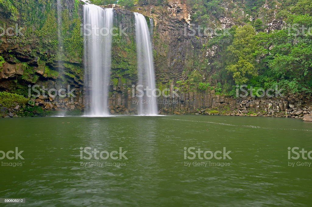 Whangarei Falls, New Zealand stock photo